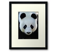 What a face! Framed Print