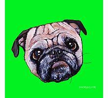Butch the Pug - Green Photographic Print