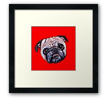 Butch the Pug - Red Framed Print