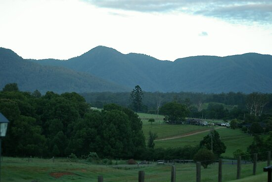 Early Morning - Bellingen by Alison Howson