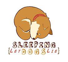 Sleeping dog by aiwatan