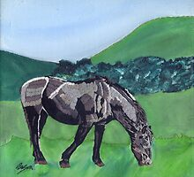 Horse At Hendra by Rebecca Mason