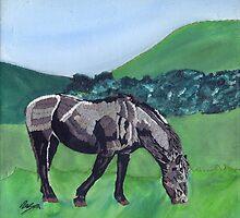Horse At Hendra by Rebecca Mason