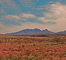 Outback Scene by Mark Whittle