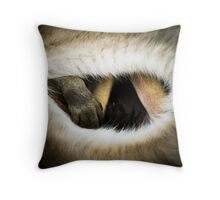 Baby Kangaroo in Pouch Throw Pillow