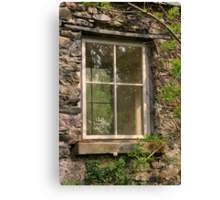 Looking Through The Window... Canvas Print
