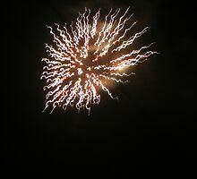 Dandelion Firework by Cathy Cale