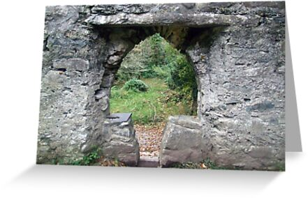 Muckross abbey entrance by John Quinn