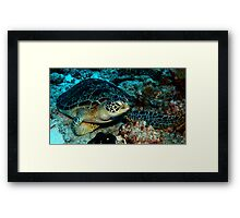 After You! Framed Print