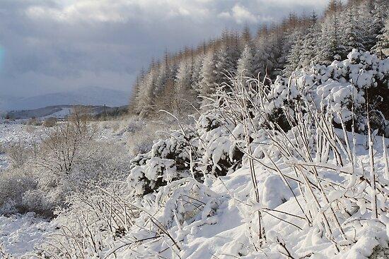 Winter scene at Laggan. by John Cameron