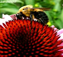 #423  Beeing Natural by MyInnereyeMike