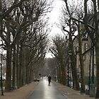 Near Les Invalides in February by debwilson
