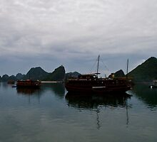 Ha Long Bay #6 by Matthew Stewart