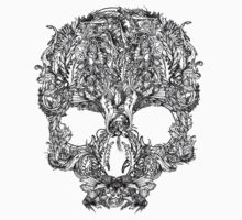 skull by Jake Harvey