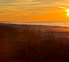 Golden Gulf Sunrise by Mark McKinney