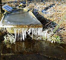 Cold bath by heinrich