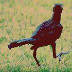 THREE BLACKBIRDS by Paul Quixote Alleyne