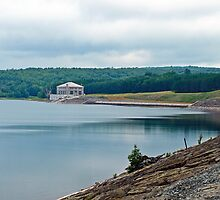 the neversink reservoir by marianne troia