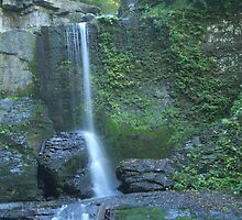 FILMORE GLEN STATE PARK WATERFALL by REDREAMER