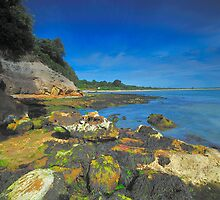 Studland Bay by delros
