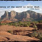 Keats in Sedona by Judy Yanke Fritzges