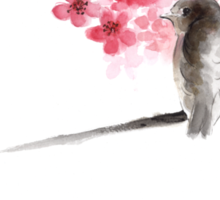 Sparrow sumi-e bird birds on branches ink drawing , cherry blossom flowers, japanese home decor Sticker
