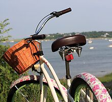 Pink Bike. by capecodart