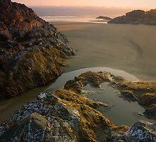 Pacific Rim National Park by Ryan Watts