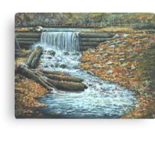 Iargo Springs Canvas Print