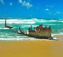 The SS Dicky Remains by Penny Smith
