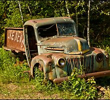 ~ Like New, Old Trucks Never Die, They Just Look That Way ~ by Tim Denny