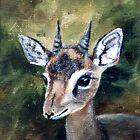 Dikdik - Dwarf Antelope by Brenda Thour
