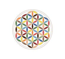 Flower of Life Retro Colors by NataliePaskell
