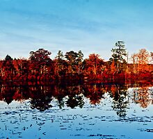 Reflections of Fall by DJ Florek