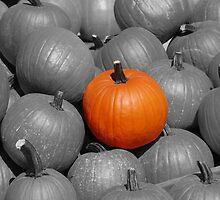 Perfect Pumpkin by Kozmo