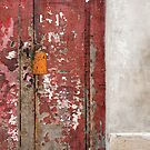 old red door by dominiquelandau
