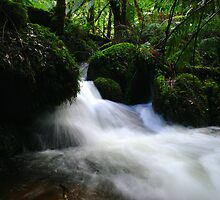 Gushing by KeepsakesPhotography Michael Rowley