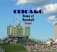 Cubs Baseball by don thomas