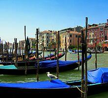 Venetian Gondolas by PPDesigns