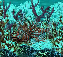 Lionfish by Walter Colvin