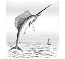 Sailfish - Charcoal   Poster