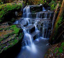 Hidden Falls by Michael Walters