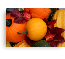Pumpkins, Gourds and Maple Leaves Canvas Print