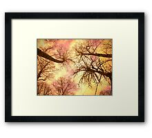 cat scan Framed Print