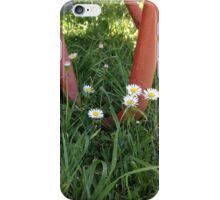 Wheelbarrow and Daisies iPhone Case/Skin