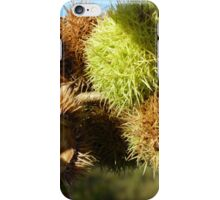 Spiky Pig Nut iPhone Case/Skin