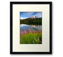 Fireweed Reflections Framed Print