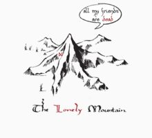 The really lonely mountain by Aidan Wells