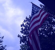 American flag blue hue from a childs view by bkind2animals