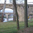 Bridges - Carcassonne by Dianne Rini
